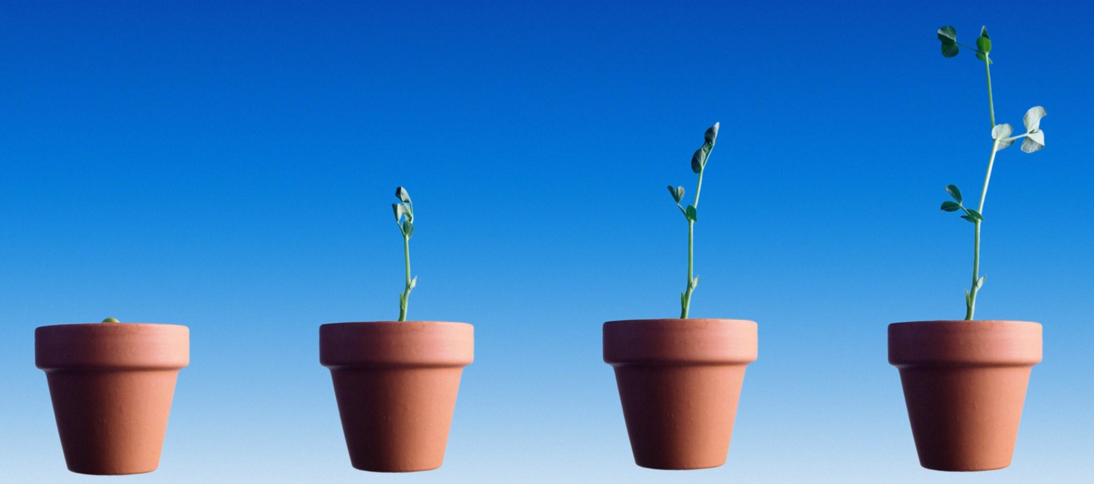 MBA Lead Nurturing